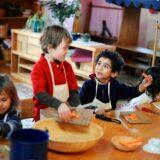Foto: website Waldorf aan de Werf  - www.wadw.school