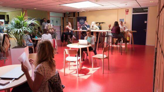 40% méér studenten voor de Vrijeschool Pabo in Leiden