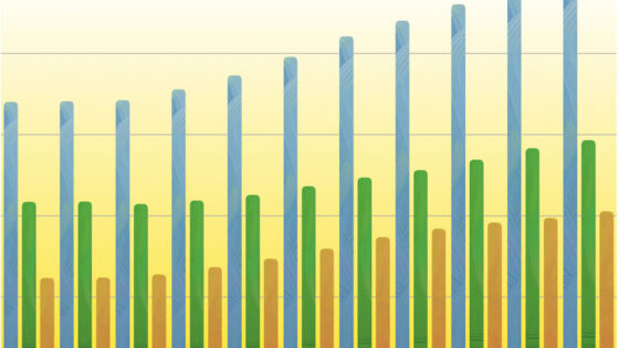 Vrijescholen groeien ruim 46% in 10 jaar